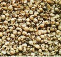 Las cáscaras de soja para la alimentación animal -