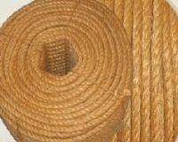 Sisal, la cuerda y la fibra -