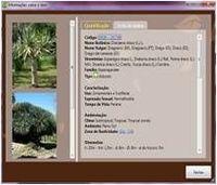 Software paisaje Calc para calcular Presupuesto del proyecto de paisajismo y riego -