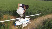 Agricultura, pesticida de rociadura abejón -