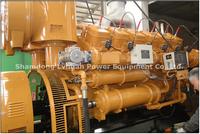Grandes precios de 1 MW de biogás generador de biogás digestor de biogás proyecto generador eléctrico -