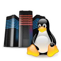 Hosting Linux -